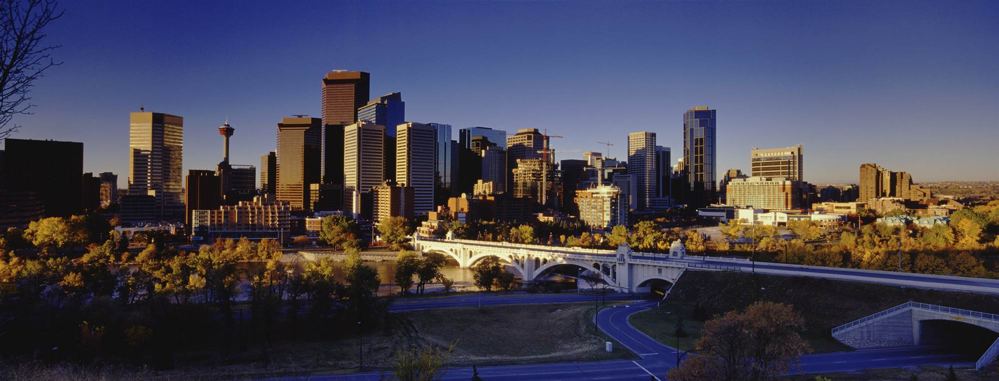 Calgary real estate franchise